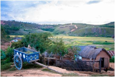 Village in the central highlands of Madagascar