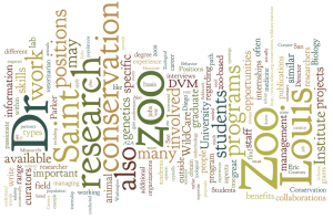 Zoo wordle
